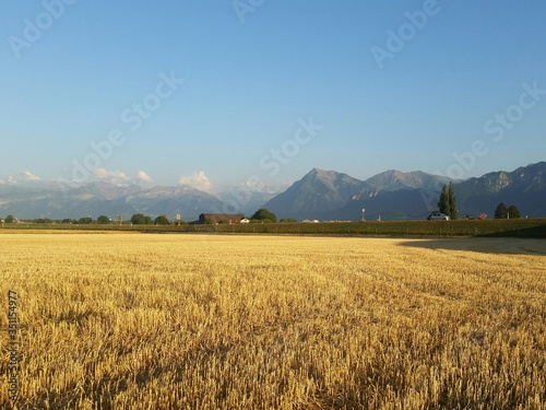 Leinwand Poster Scenic View Of Field In Front Of Mountains Against Clear Sky