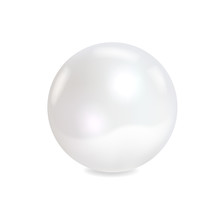 White Sea Pearl On White Backg...