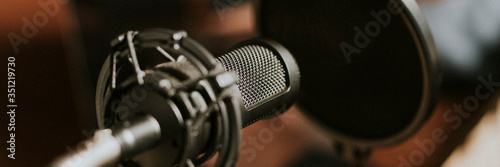 Closeup shot of a microphone Wallpaper Mural