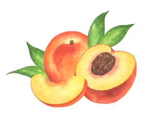 Watercolor Peach Composition