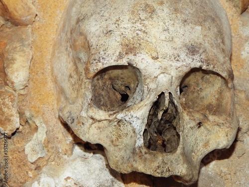 Papel de parede Close-up Of Human Skull At Capela Dos Ossos