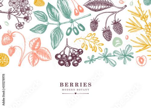 Photo Seasonal berries vector banner in engraved style