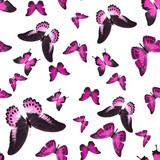 seamless pattern of pink tropical butterflies isolated on white background