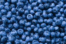 Fresh Blueberry Background. Te...