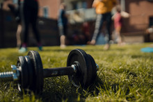 Dumbbell Lying In Grass With F...