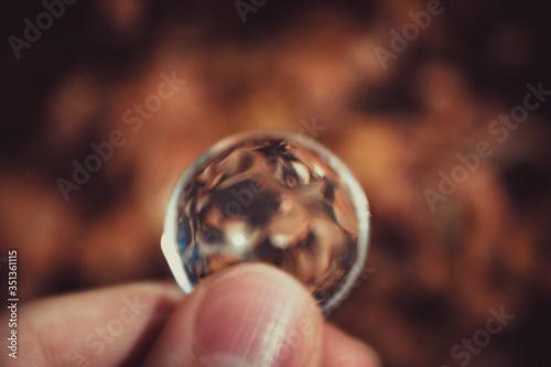 Photo Bola transparente com folhas marrons ao  fundo