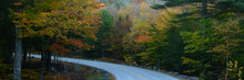 Road Among Trees With Fall Foi...