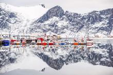 Norwegen, Troms, Senjahopen, D...