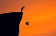 Leinwandbild Motiv Silhouette Man Looking At Woman Falling From Cliff Against Clear Orange Sky
