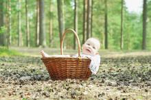 Photosession Of The Newborn Ad...