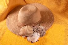 High Angle View Of Hat And Seashells