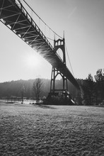 Portland Bridge Black And White