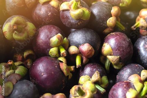 mangosteen fruit on the market