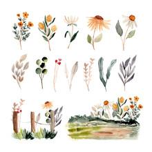 Floral Garden Scene Watercolor Collection