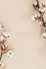 Cotton Flower Branch On A Beige Background Mockup