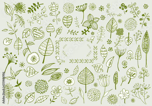 線画:北欧風 イラスト かわいい 手書き 挿絵 ベクター 花 木 葉 植物 緑 リーフ #351466986