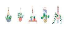 Macrame Hangers For Plants In Pots Set Of Flat Vector Illustrations Isolated.
