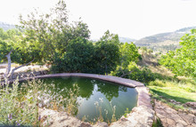 "A Pool Of Water That Fills From A Spring Called ""ein Lavan"" In The Mountains Of Jerusalem, Empty Because Of The Corona Virus"