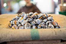 Tasty Roasted Chestnuts Sold O...