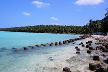 Beautiful  Lakshadweep Island  Beach ,coconut  Trees Hanging Over A Sandy White Beach With Blue Sky