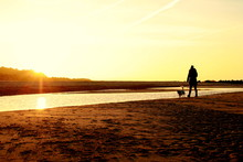 Silhouette Woman With Dog Walking On Shore At Beach Against Sky During Sunset
