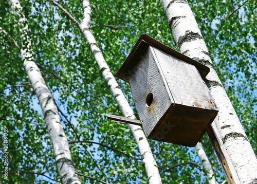 Foto Low Angle View Of Birdhouse Hanging On Tree