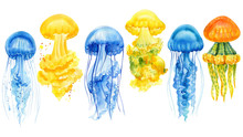 Set Of Beautiful Blue And Yellow Jellyfish On An Isolated White Background, Watercolor Hand Drawing