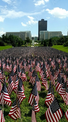 фотография Small American Flags On Field In City
