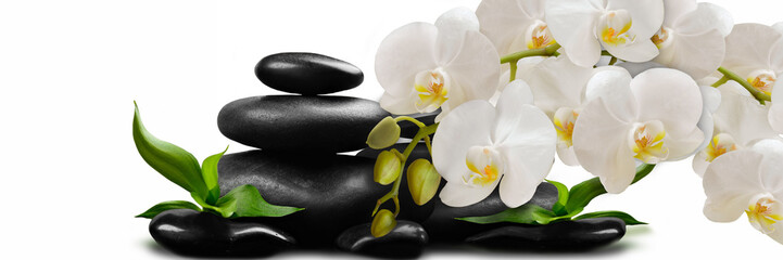 Panel Szklany Storczyki White Orchid flowers on black stones