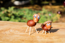 Funny Sheep Shape Characters Or Figurines Made With Chestnuts On A Wooden Background In A Sunny Day