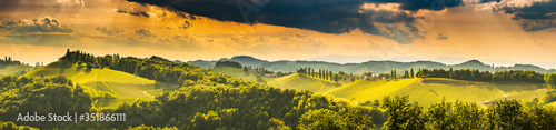 Fototapeta South styria vineyards landscape, near Gamlitz, Austria, Eckberg, Europe. Grape hills view from wine road in spring. obraz