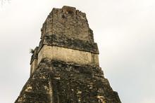 Tikal National Park On Unesco World Heritage. Back Side Of Temple.