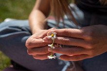 Young Woman Making Daisy Chain...
