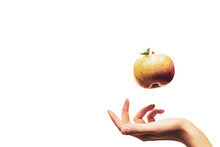 The Woman's Hand Throws An Apple In The Air