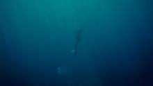 Freediver Ascending While Spea...