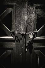 Close-up Of Locked Gate