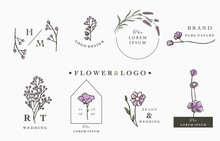 Flower Logo Collection With Le...