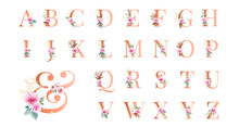 Gold Floral Alphabet Set A - Z Plus & With Pink Flowers, Leaves, And Gold Glitter. Flowers Composition For Logo, Wedding Cards, Branding, Etc