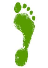 Green Ecological Footprint Design