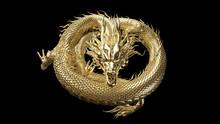 Full Body Gold Dragon In Coin ...