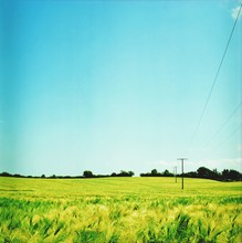 Landscape With Power Line In Field