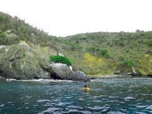 Snorkel En Ecuador Desde Puerto Lopez Llegando A La Isla