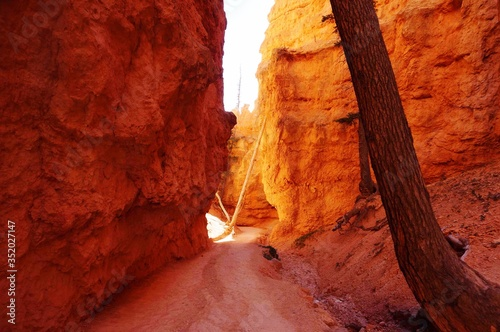 Leinwand Poster Narrow Alley Amidst Rock Formation In Bryce Canyon National Park