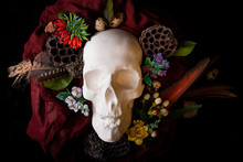 The Day Of The Dead Installation : Plaster Skull In Flowers And Feathers On Black Background