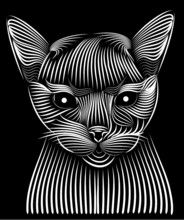 Illustration, Black, White, Design, Animal, Abstract, Art, Cat, Tattoo, Isolated, Cartoon, Zebra, Pattern, Face, Tribal, Mask, Graphic, Drawing, Decoration, Vector, Butterfly, Symbol