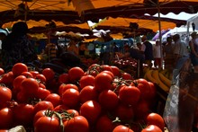 Tomatoes For Sale In Market