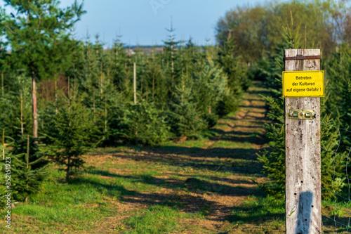 Photo Yellow warning sign with German text Entering the crops at your own risk in front of conifer tree crops on a sunny day