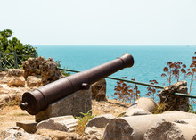 An Old Gun On The Coast Of Ant...