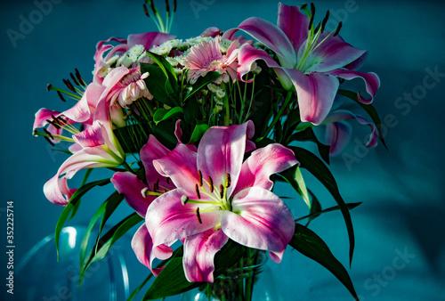 Close-up Of Pink Stargazer Lily Fototapeta
