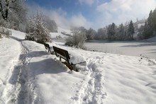 Snow Covered Park Benches On Field During Sunny Day